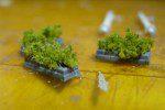 植木を作る